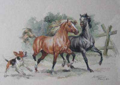 Camargue, 1983 acquarello su carta 48x34 cm